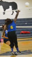Charles City's Krystal Moody tips the ball over the net.Robb Johnson photo